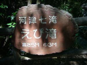 伊豆(2009年9月6日)26
