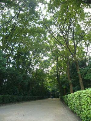 井草八幡宮4