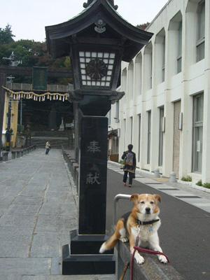 仙台塩釜6