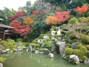 京都(2009年11月29日)28