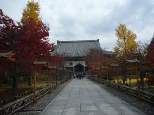 京都(2009年11月29日)29
