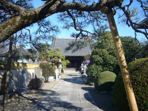 守戸神社(2010年1月1日)4