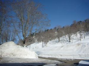 秋田vol.1(2010年2月27日)1