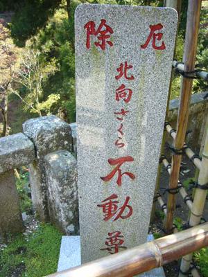 大山阿夫利神社9