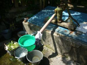 千葉勝山(2010年5月8日)13