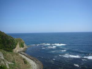 千葉勝山(2010年5月8日)20