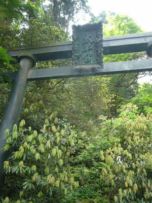 大平山・古峰神社14