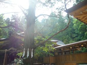 宝登山神社(2010年6月22日)5