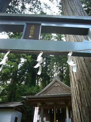 武すし、入間滝(2010年8月30日)18
