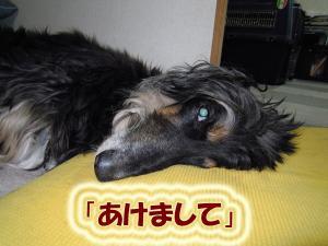 100101_021.jpg