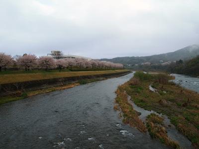 今朝の渡良瀬川