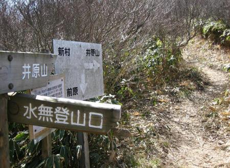 新村から井原山 046