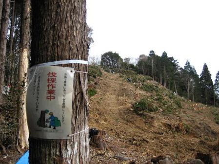 から迫岳 168
