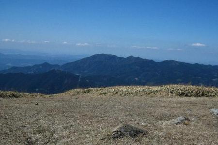 天山のホソバナコバイモ 045