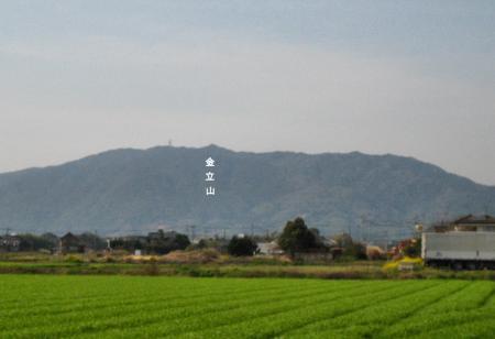 金立山 230