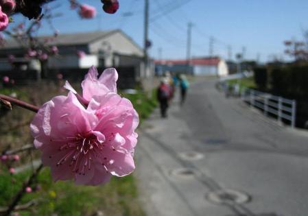 長崎街道神埼 077