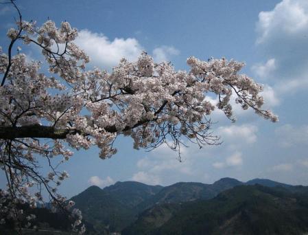 唐迫岳 092