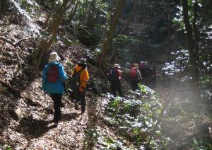 山開きから迫岳 108