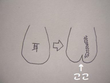 b222.jpg