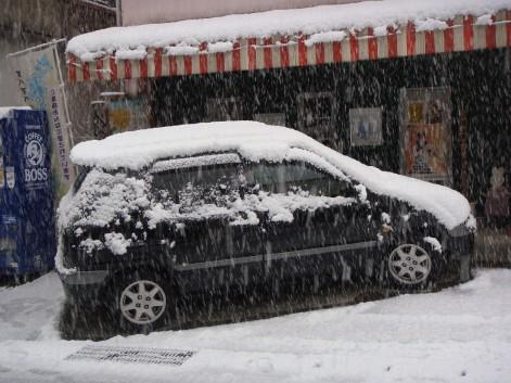 久しぶりの積雪3