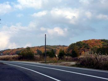 20101110_3.jpg