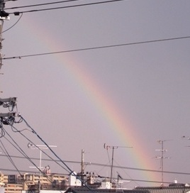 rainbow22_20110731175609.jpg