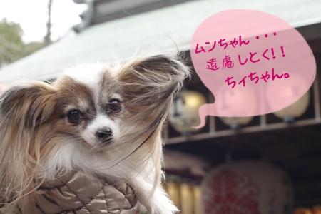 _MG_9611-2012-2012.jpg