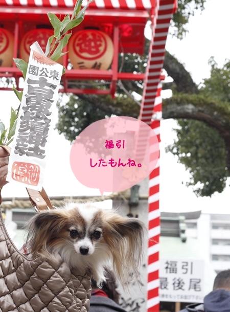 _MG_9623-2012-2012.jpg