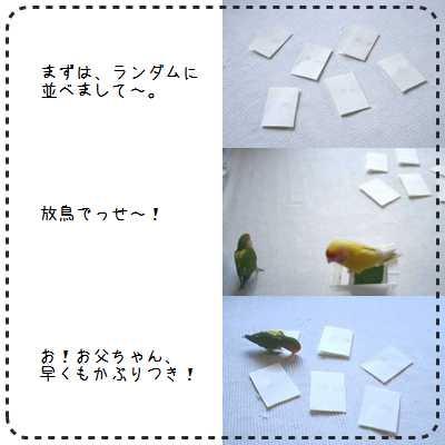 抽選作業①