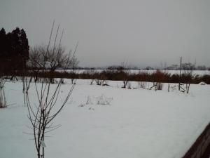 H22_3雪