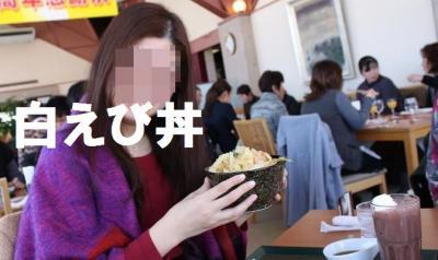 白えび丼vgy