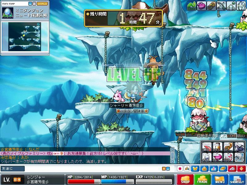 Maple101109_175629.jpg