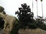 上海動物園1