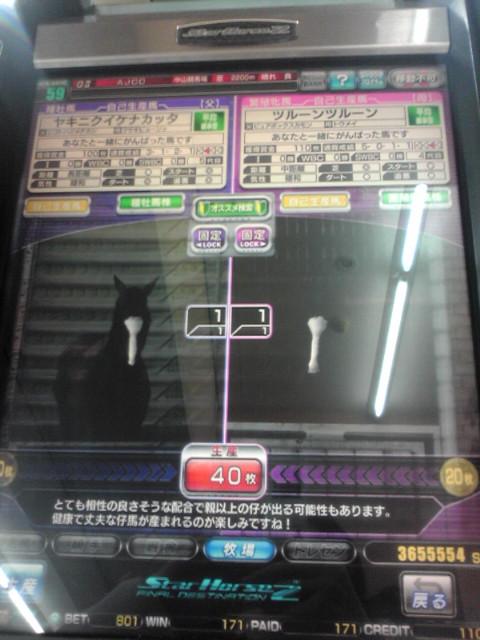 20110112215058.jpg