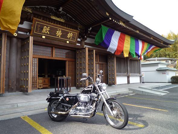 2012_0120戸田別館 0005