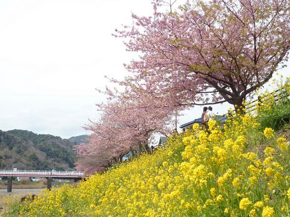 2012_0316戸田別館 0012