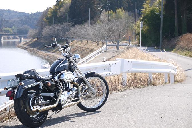 2013_0226戸田別館 0003