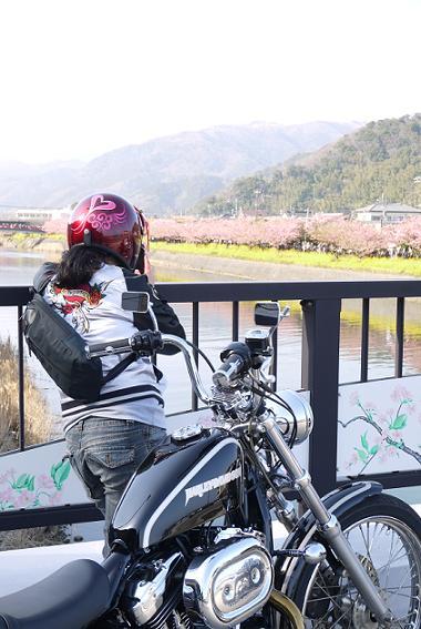 2013_0309戸田別館 0053
