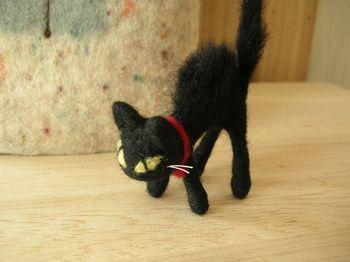 macoosさんの黒猫