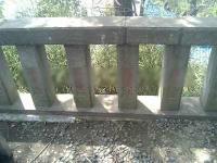 熊野神社5a
