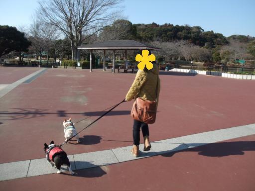 3-12公園ママ