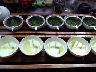 本山茶テイスティング