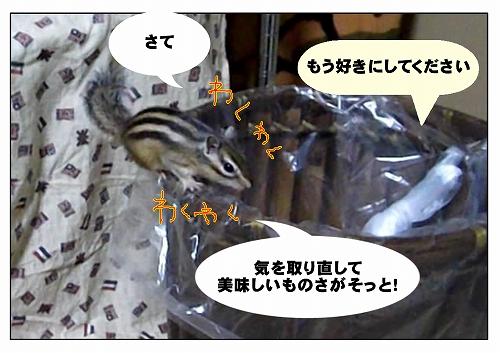 2011115_10