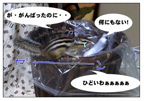 2011115_13