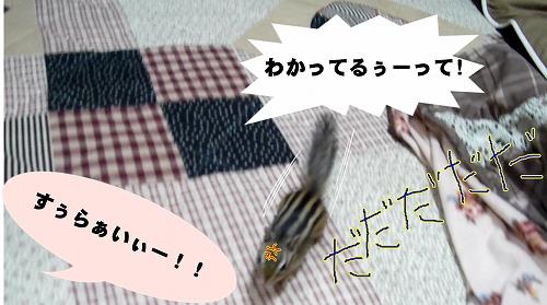 yobaresura6
