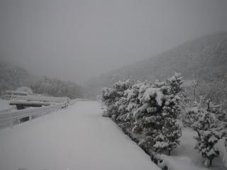 大雪の通勤2