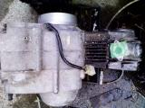KC361473.jpg