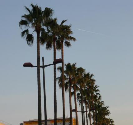 帰り道に見た飛行機雲