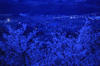 変換 ~ IMG_1214夜の新幹線
