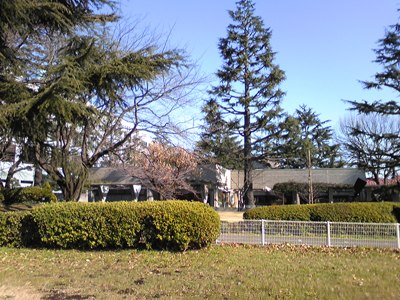 100105_砧公園